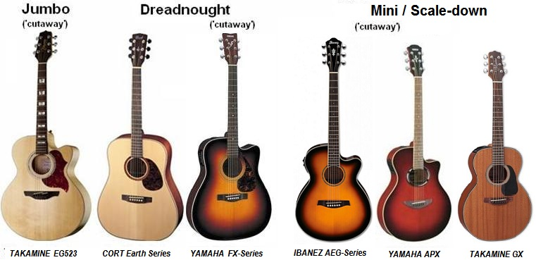 Guitar Body Types2